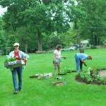 plant green 2012_4932 (26)