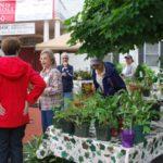 plant sale 2012_5128 (9)