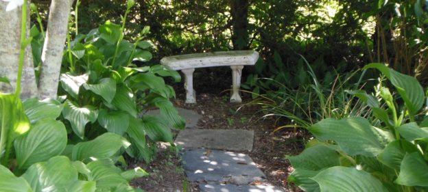 Jan Valus' garden (2)