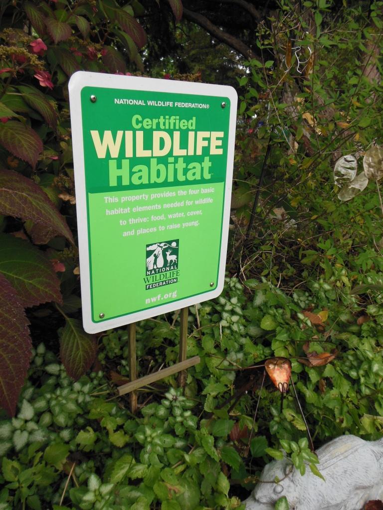 Federated Garden Club Projects Norwalk Garden Club
