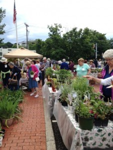 Plantsale 2015crowd